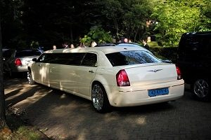 Professional Limo Hire Service